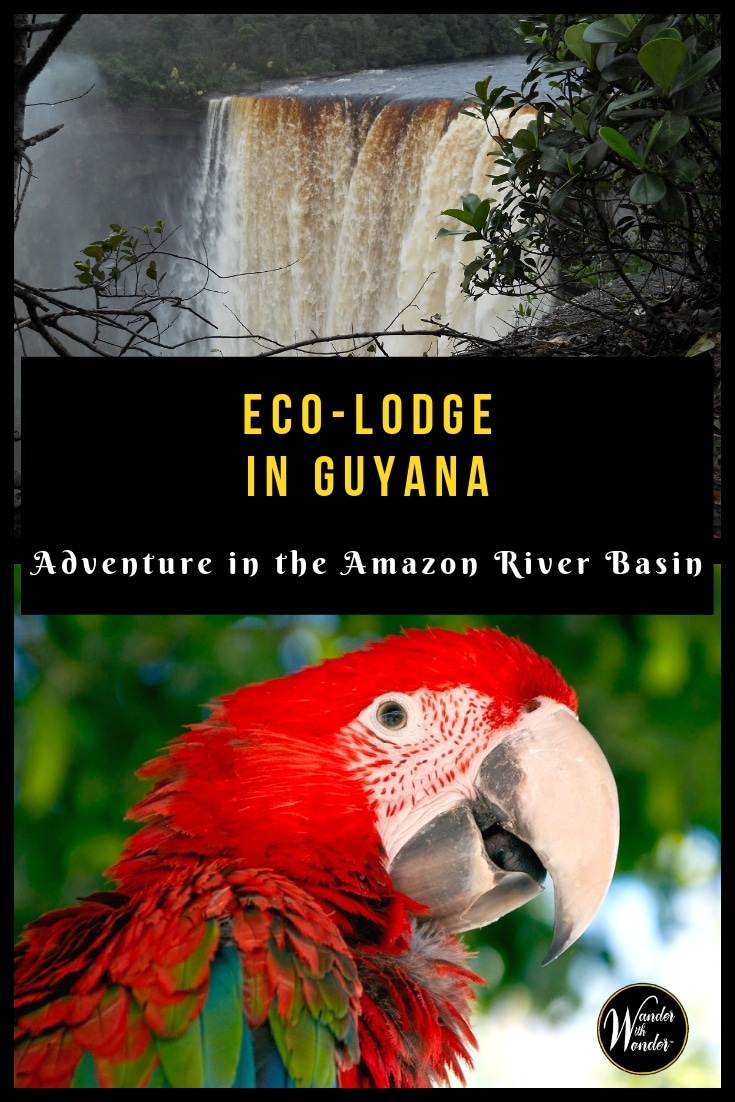 For those who want to visit an Eco-Lodge in Guyana, the Lokono-Arawak Amerindian Reservation in the Amazon River basin offers a once-in-a-lifetime experience. #ecotravel #travel #Guyana #adventure #adventuretravel #amazon