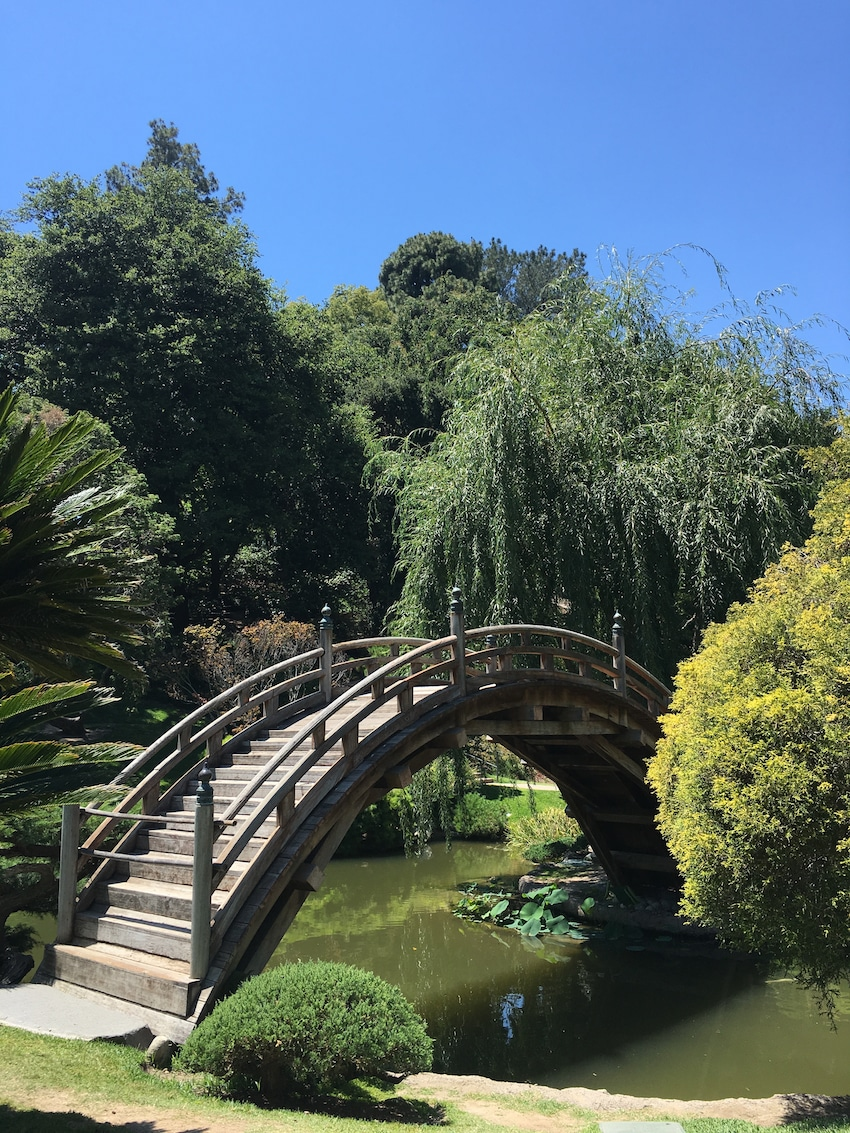 best gardens in North America - Blending art and gardens, The Huntington offers an escape near LA. Photo by Catherine Parker