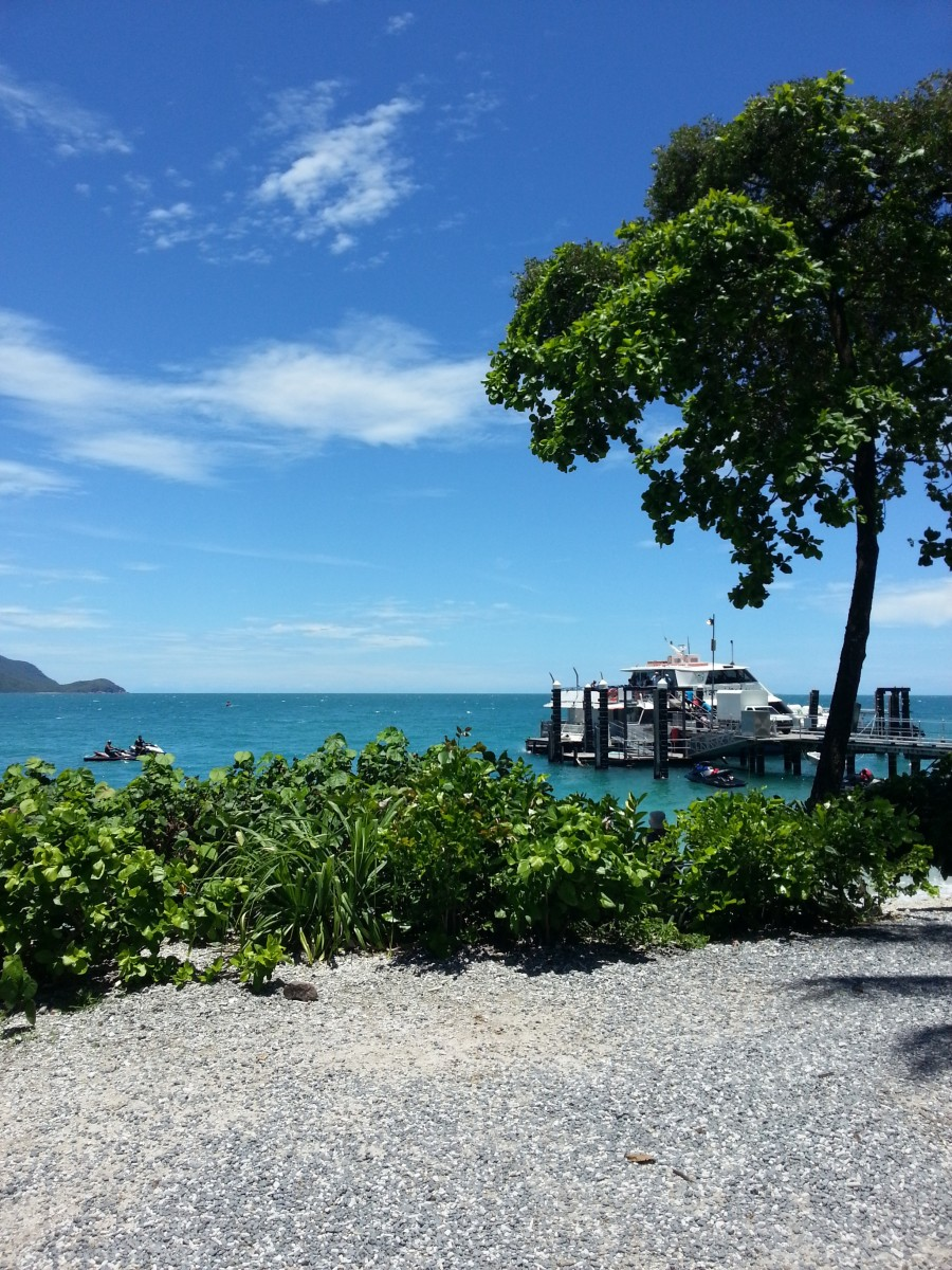 Fitzroy Island in Australia. Image by kat_brcs from Pixabay