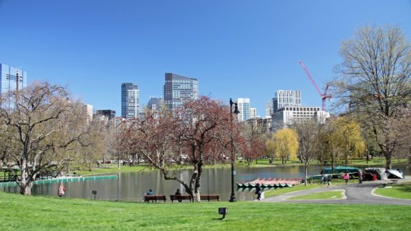 Explore Boston Common. Photo by Monica Volpin from Pixabay