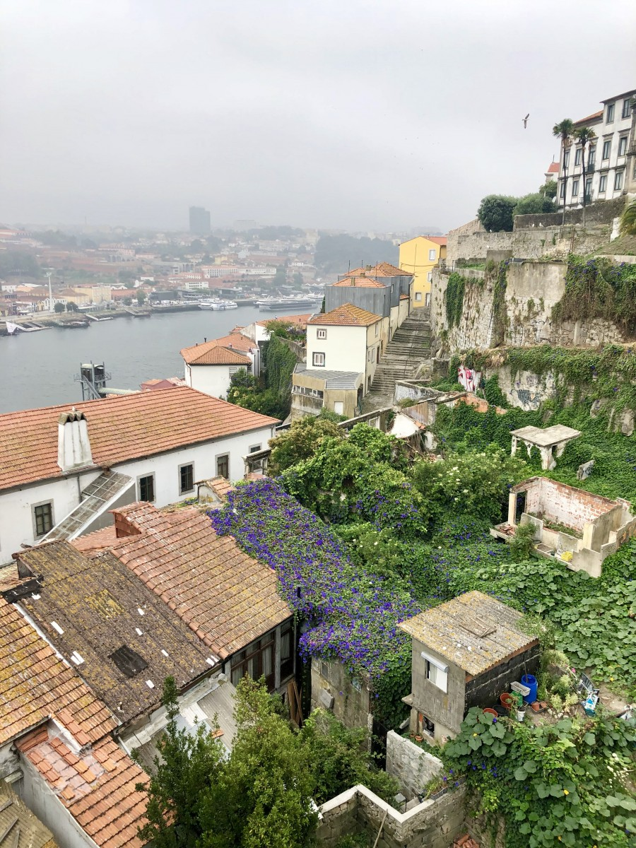 Viking River Cruise - Portugal - Douro River Cruise