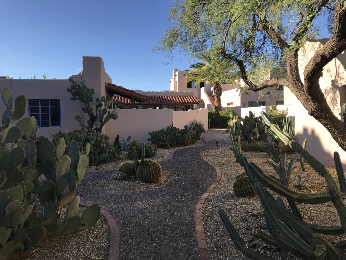 48 hours in Tucson
