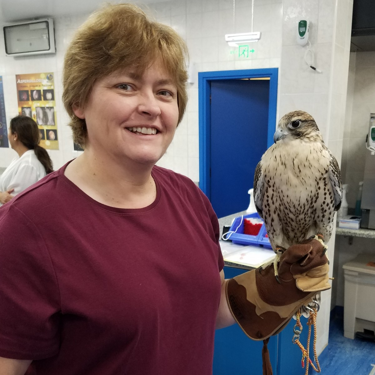Holding a falcon at the Abu Dubai Falcon Hospital. Photo courtesy of Teresa Bitler