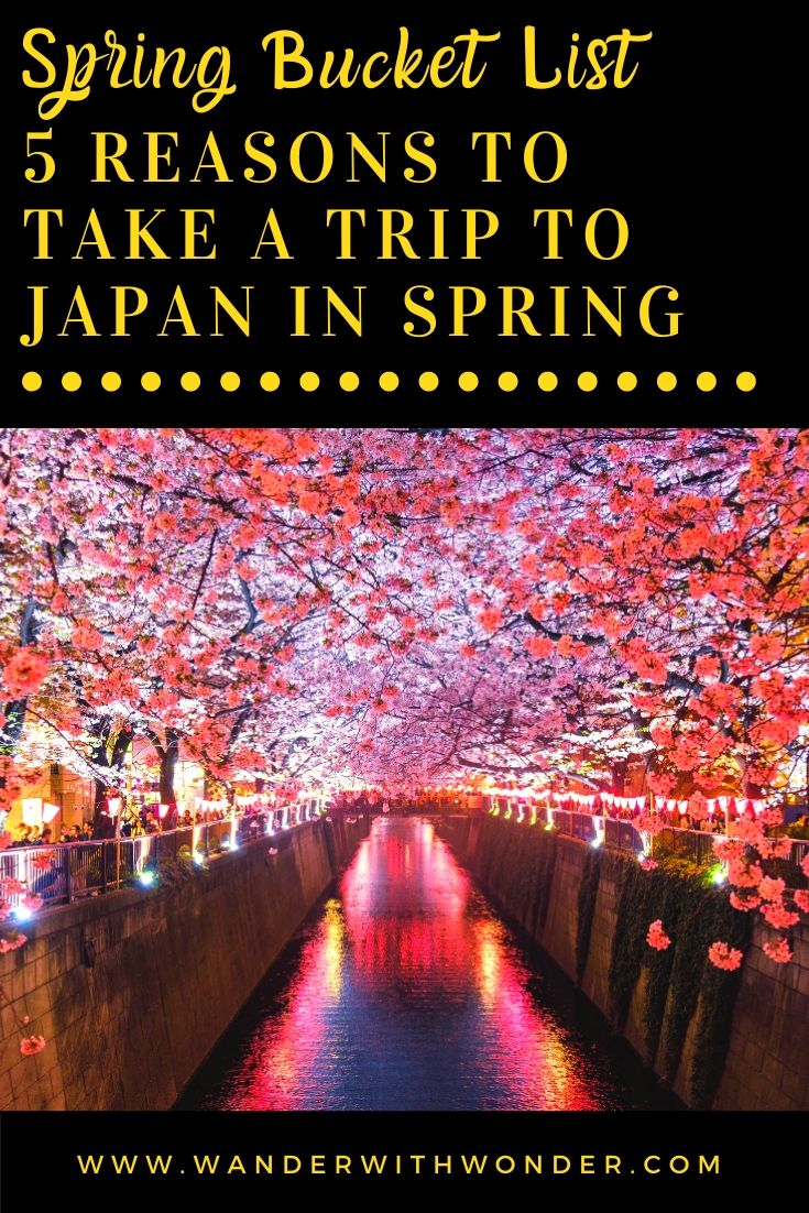 Here are 5 reasons to take a trip to Japan in the Spring. Go ahead and book that air ticket now for your bucket list trip to visit Japan.
