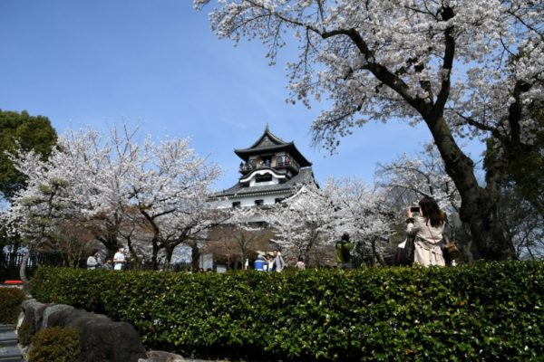 The Haritsuna Shrine at the Inuyama Castle - Japan in the Spring