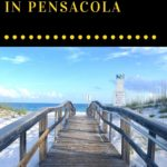 Now is the time to think ahead about what you want to do this summer. When you daydream about the ideal summer vacation, does a cloudless sky, sunny beach, and your favorite drink in hand come to mind? Here are a few of our favorite spots for summer in Pensacola, Florida.