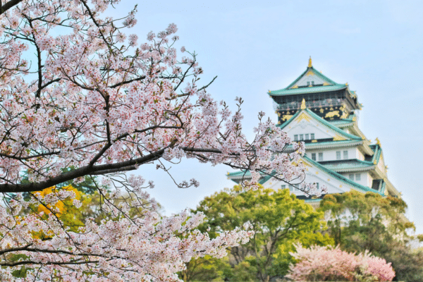 Japan in the Spring