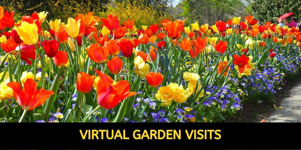 Virtual Garden Visits: Explore Gorgeous Gardens from Home