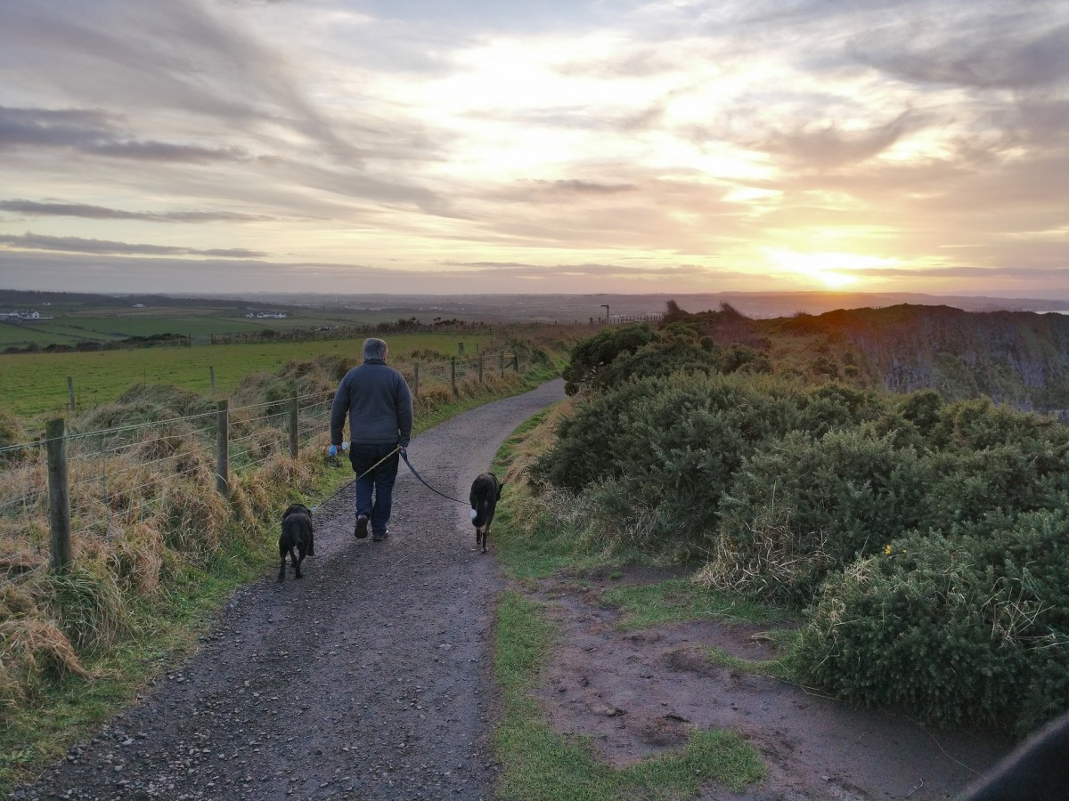 pet-friendly travel in the UK