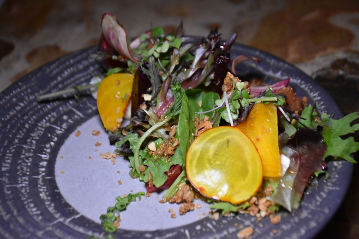 Whistler in the Off Season - Local beet salad from Bar Oso.