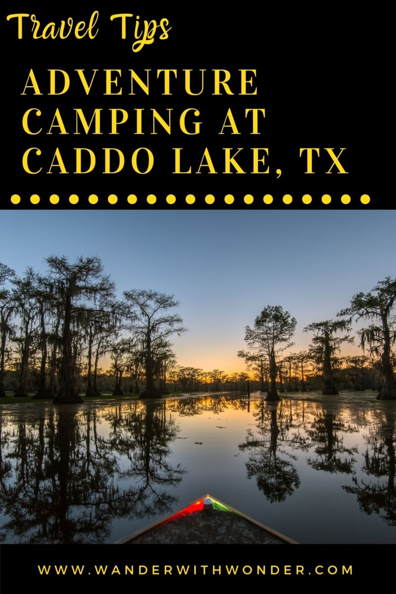 If you're looking for a true American adventure, then Caddo Lake in Texas is an incredible state park with a difference. Covering 25,400 acres, not including the surrounding bayou, Caddo stretches along the borders of Texas and Louisiana. You can spend days exploring the maze of waters, overshadowed by tall cypress trees, heavy with moss. You can easily spend your days hiking, canoeing, fishing, and boating through the waterways and see some amazing wildlife.