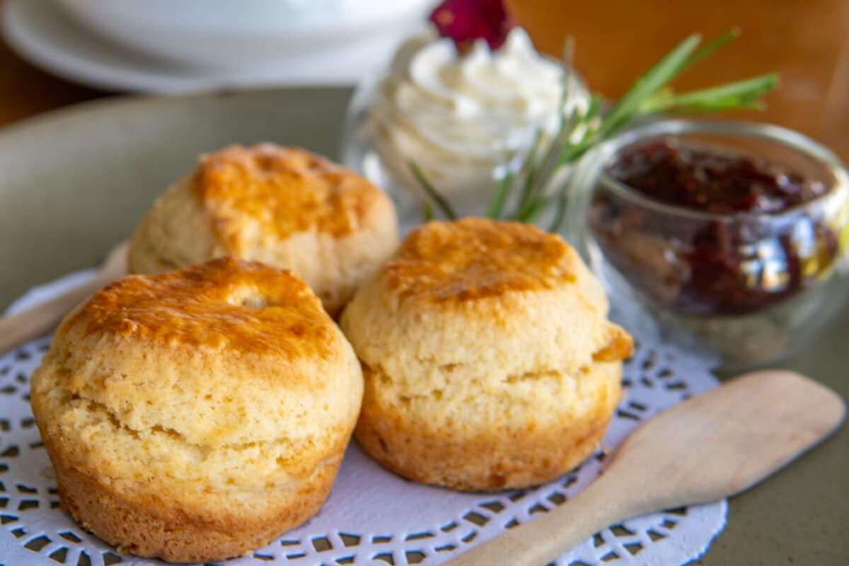 Enjoy scones with jam and clotted cream during afternoon tea. Photo by scottiebumich via iStock by Getty Images
