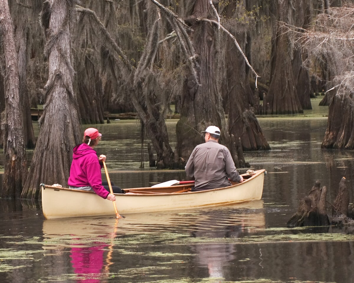 Recreational canoers on Caddo Lake in eastern Texas enjoying a spring weekend. Photo by gapwedge via iStock by Getty Images