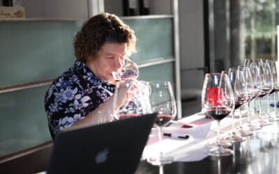 Women of Wine: The Best Wines from Today's Female Winemakers