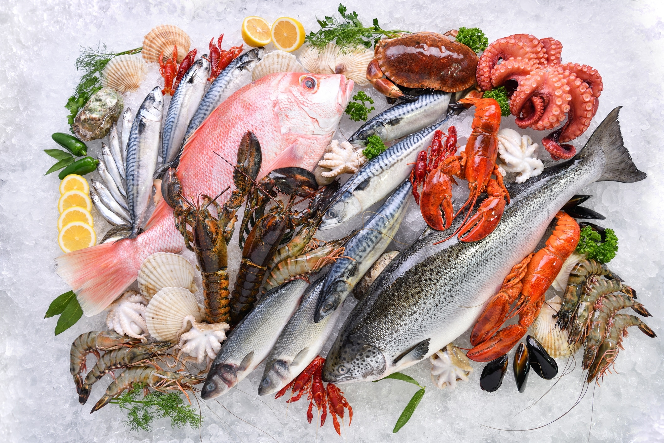 4 Things All Seafood Enthusiasts Love to Do